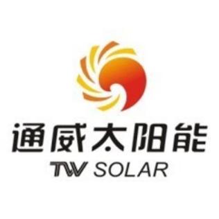 通威太阳能(眉山)有限公司